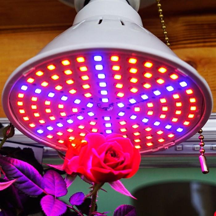Лампа для растений Весна 15 Вт - фото 73426