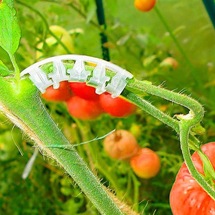 Держатель Листок кисти томатов 25шт - фото 73823