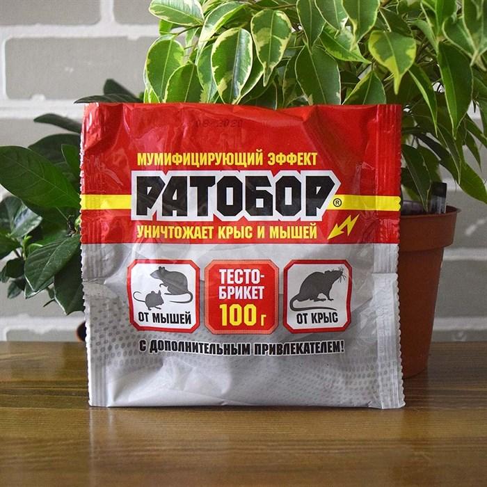 Ратобор тесто брикет 100г - фото 81331