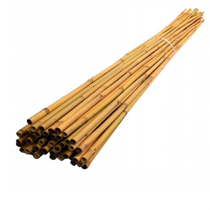 Жердь бамбуковая 180 см 10/12 - фото 86949