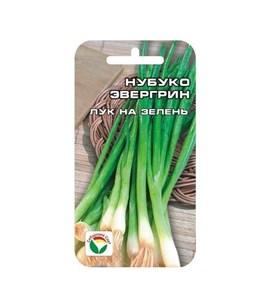 Лук на зелень Нубуко Эвергрин