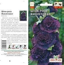 Шток-роза фиолетовая 0,1гр