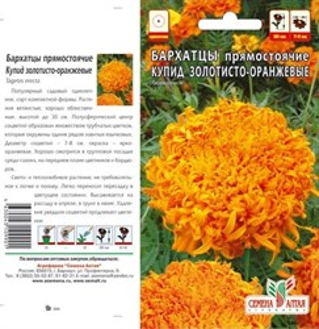 Бархатцы Купид золотисто-оранжевые 0,3гр - фото 51158