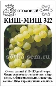 Виноград Кишмиш №342