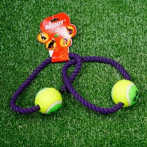 Игрушка АПОРТ 2 кольца с мячами R1070