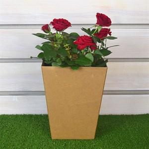 Коробка для цветов 12,5*18*22,5
