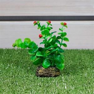 Растение ТРИТОН пластмас. 10см 1012