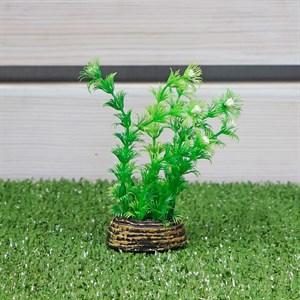 Растение ТРИТОН пластмас. 13см 1347