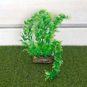 Растение ТРИТОН пластмас. 13см 1350