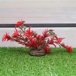 Растение ТРИТОН пластмас. 16см 1668