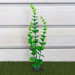 Растение ТРИТОН пластмас. 38см 3804/8308