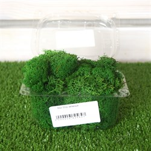 Мох 50гр зеленый