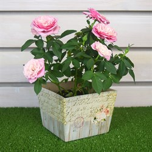 Плайм пакет для цветов 110*150/125 Шебби-шик