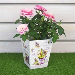 Плайм пакет для цветов 150*120/90 Прованс