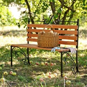 Скамейка с деревом
