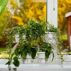 Подставка для цветов на подоконник 14-917 на 7 цветов