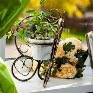 Подставка Бабочка на 1 цветок 10 95-035