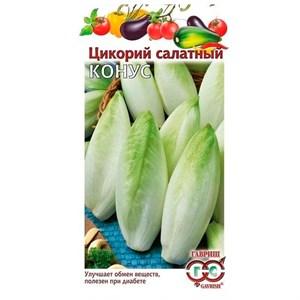 Цикорий салатный Конус 0,1г - фото 64877
