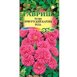 Астра Эрфуртский карлик роза 0,3гр - фото 65151