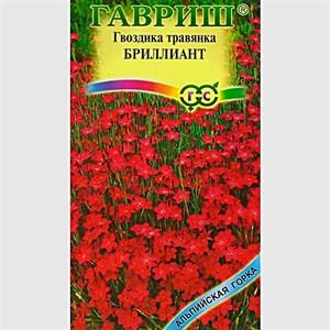 Гвоздика травянка Бриллиант 0,1гр - фото 65156