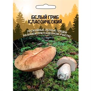 Белый гриб Классический