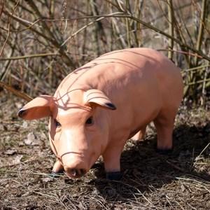Фигура Свинья - фото 65633