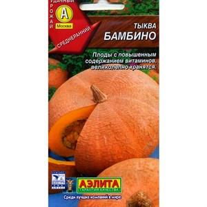 Тыква Бамбино - фото 66035
