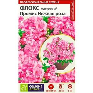 Флокс Промис нежная роза 5шт