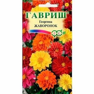 ГеоргинаЖавороноксмесь0,3гр - фото 67206