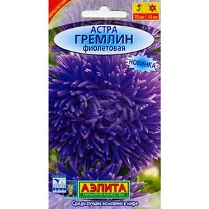 Астра Гремлин фиолетовая