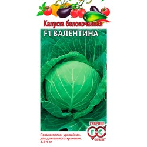 Капуста Б/К Валентина 0,1г