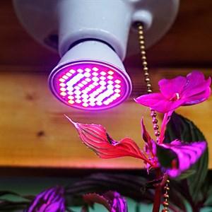 Лампа для растений Весна 6 Вт