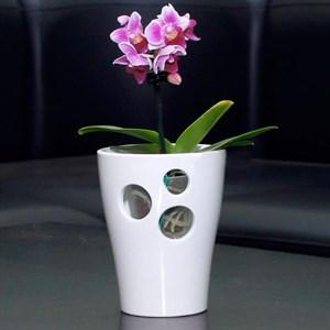 Кашпо Орхидея 10см белый