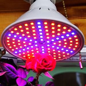 Лампа для растений Весна 15 Вт