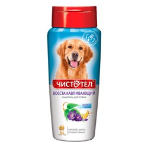 Шампунь ЧИСТОТЕЛ от блох восстанавливающий для собак 270мл