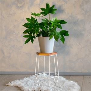Подставка для цветов кованая с деревом Лофт 66-411
