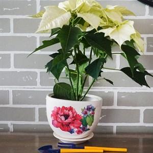 Горшки для цветов ЖЕМЧУЖИНА №3 (декупаж)