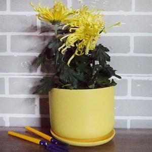 Горшки для цветов ОРФЕЙ №3