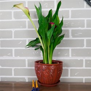 Горшки для цветов ЦВЕТОК №1