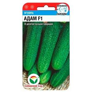 Огурец Адам 5 шт