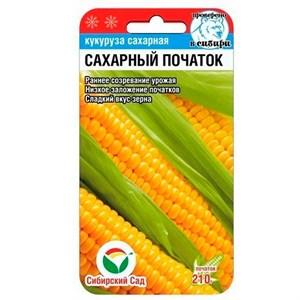 Кукуруза Сахарный початок 6 шт
