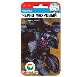 Базилик Черно-махровый 0,5 гр