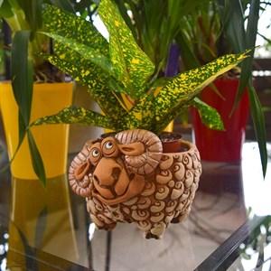 Кашпо Барашек для кактусов 10,5*7см 0,5л