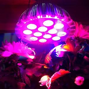 Лампа для растений Фитосинтез 36