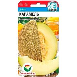 Дыня Карамель 7 шт