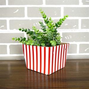 Плайм пакет для цветов 110*150/125 Полоски красные