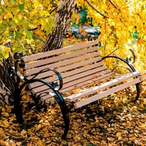 Скамейка садовая кованая с деревом 881-14R
