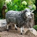 Фигура Овца - фото 62344