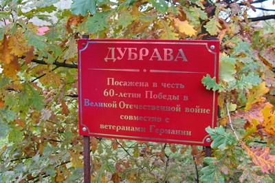деревья посаженные в честь ветеранов