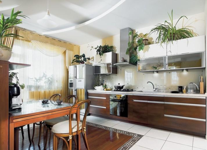 Цветок на кухню фото
